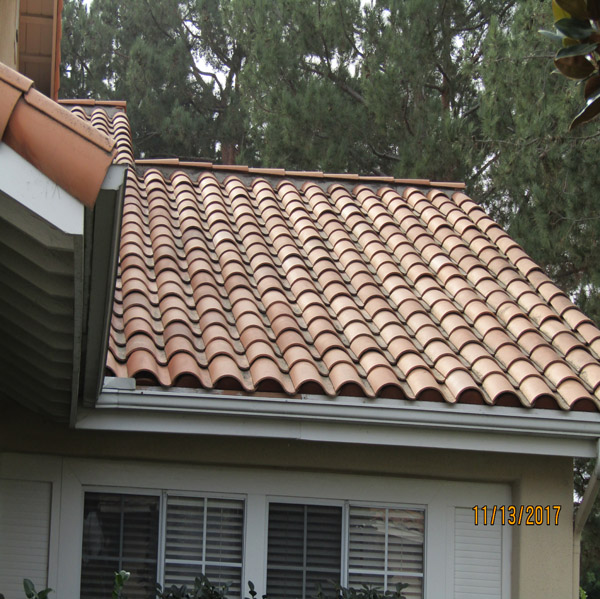 Roof Amp Rain Gutter Cleaning